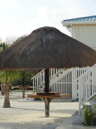 رويال بالم آيلاند ريزورت:                   The beautiful resort                 