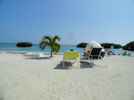 Royal Palm Island Resort :                   The beautiful resort