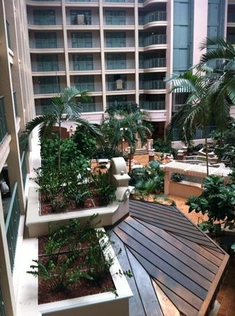 Sheraton Suites Fort Lauderdale at Cypress Creek:                   Beautiful view to walk out to!