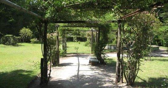 Parque Municipal Vivero Cosme Argerich:                   Pergola de Jazmines