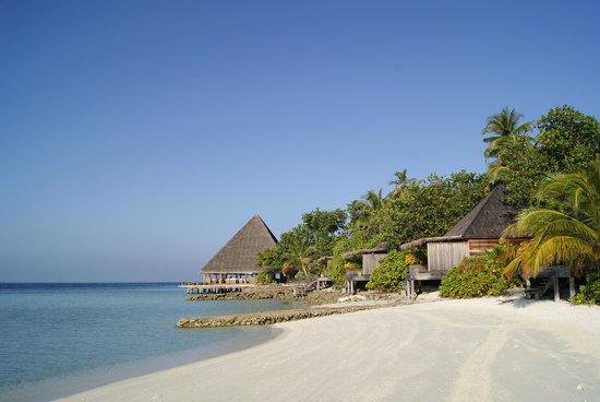 Gangehi Island Resort:                   Foto Spiaggia