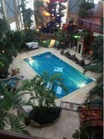 L'Hotel Quebec:                   Heated atrium with pool & spa.