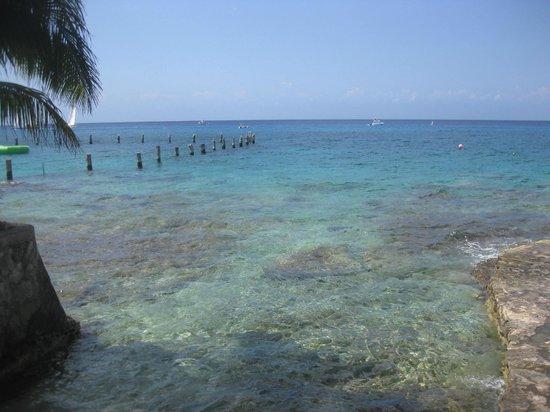 Blue Angel Resort:                   shore dive entry area
