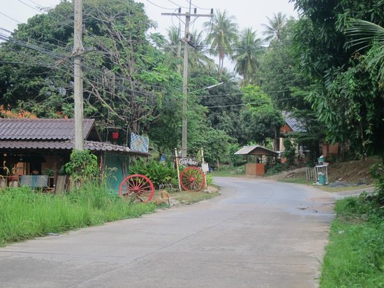 Shambhala Bungalow Village:                   country living...  going for a walk on the main road.