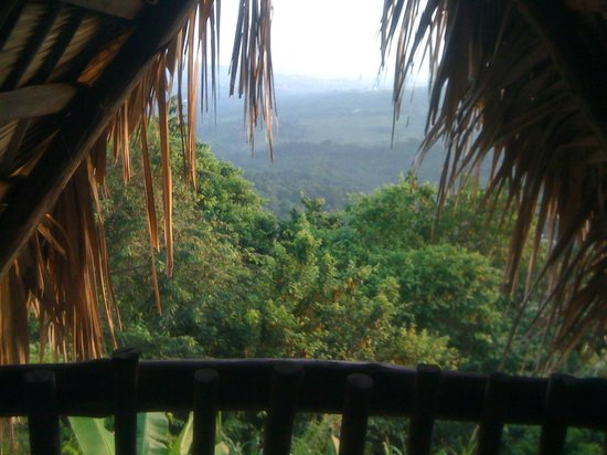 Tubagua Plantation Eco Lodge:                   My room view