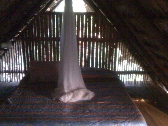 Tubagua Plantation Eco Lodge:                   Best nights sleep right here