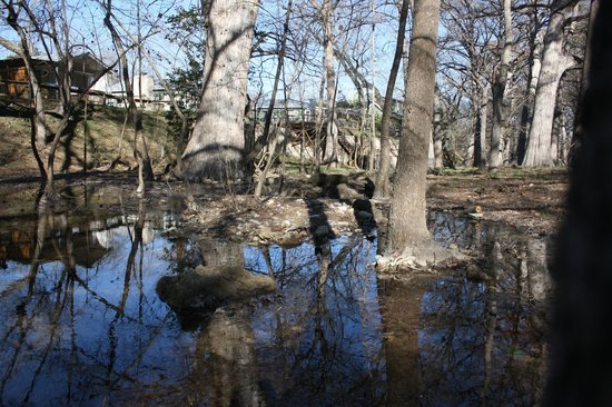 Cypress Creek Cottages:                   Creek by the Cottages