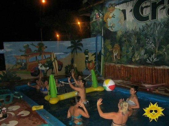 Crazy summer:                                                       swimming pool voley / voley en la pileta