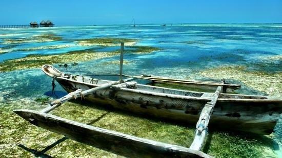 Dongwe Club:                                                       bassa marea