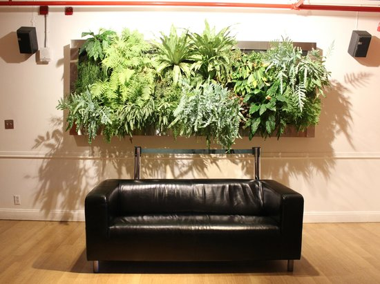 Hostelling International - New York: Living Wall