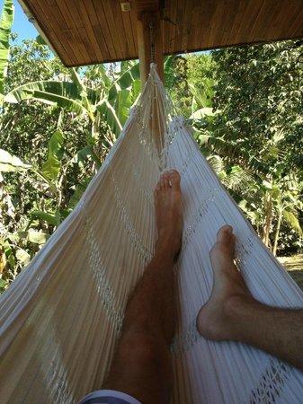 Hermosa Rentals:                   relaxin'