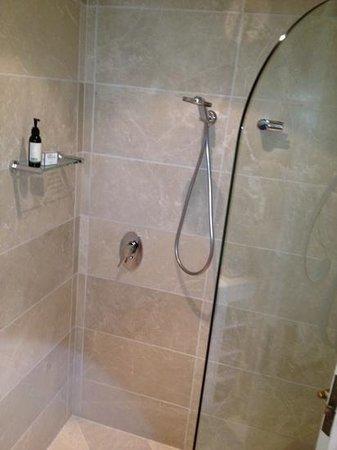 إيكوز بوتيك هوتل آند ريستيورانت:                   shower                 