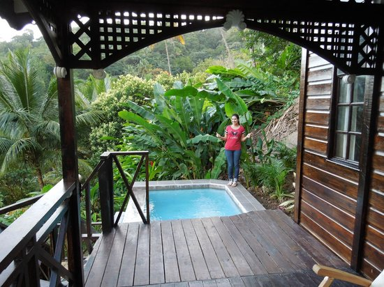 Fond Doux Plantation & Resort:                   Mango honeymoon suite with private pool