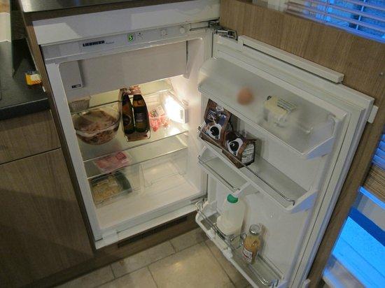 Norwich Street Apartments - Peymans :                   little refrigerator