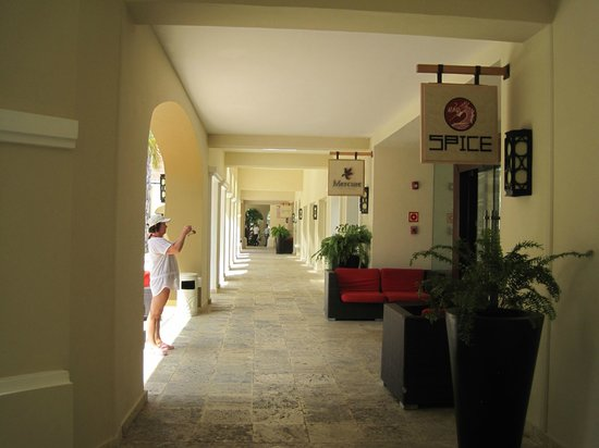 Now Larimar Punta Cana:                   Resturants