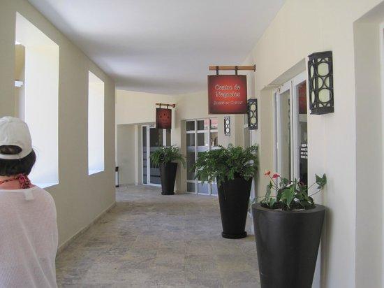 Now Larimar Punta Cana :                   Resturants
