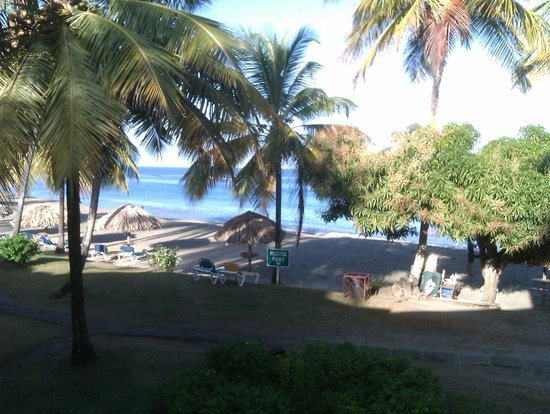 Turtle Beach by Rex Resorts:                   View from our balcony at morning time!  literally steps away from the beach!