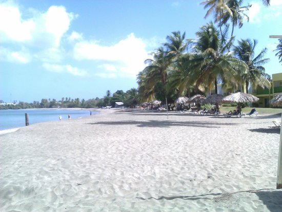 Turtle Beach by Rex Resorts:                   part of the beautiful beach this Resort is located on!