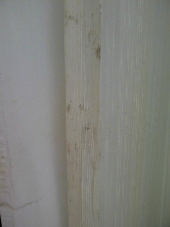 Marival Resort & Suites:                   Mold on the curtains