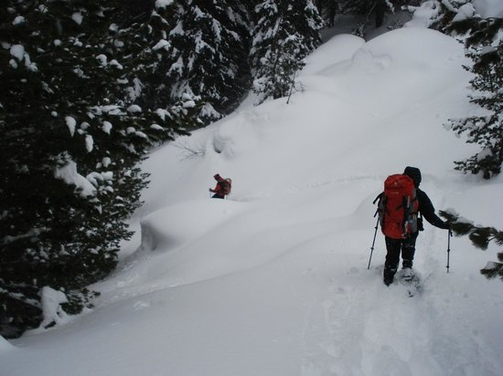 Hiking Guide Bulgaria Day Tours:                   ...