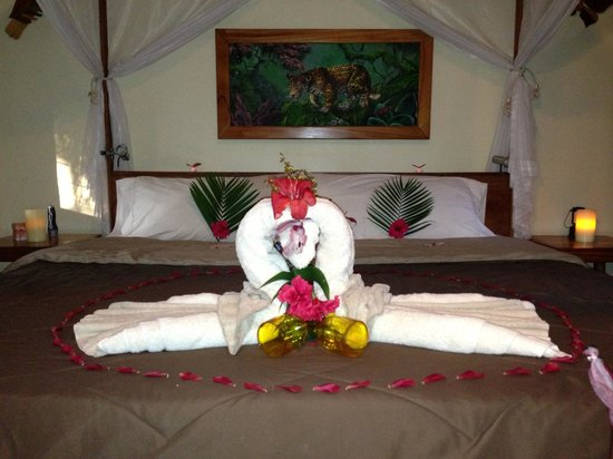 Mariposa Jungle Lodge:                   Welcome in our Bungalow for my Wife's Birthday