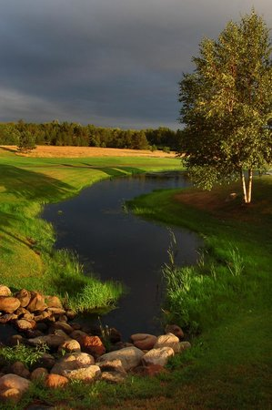Whitebirch Golf Course: Whitebirch