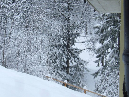 Hotel Edelweiss:                   View of the piste where you 'ski-in' from our room