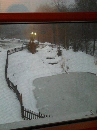 Arbachmühle:                   Iced pond