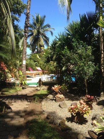 El Encanto Inn:                   Piscina e giardino