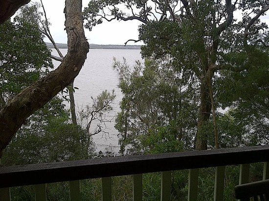 Eumarella Shores Noosa Lake Retreat: The lovely view from the deck