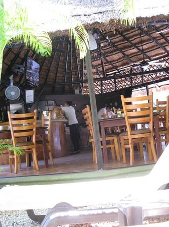Mayan Bistro : The view from the pool