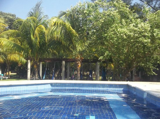 Real Playa del Carmen:                   Pool
