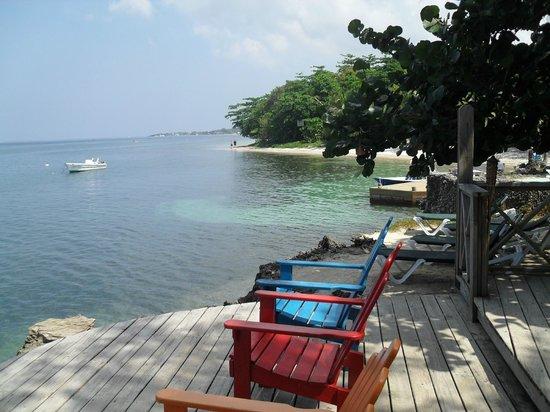 Las Rocas Resort & Dive Center:                   Water Front Deck