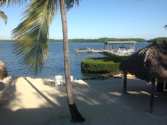 Coconut Palm Inn:                   view from coconut palms