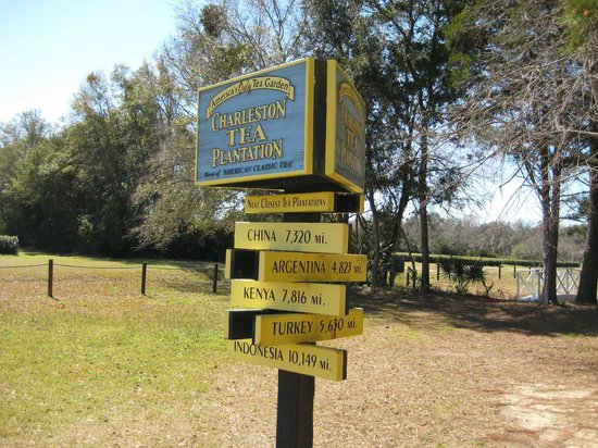 Charleston Tea Plantation:                   Sign Post