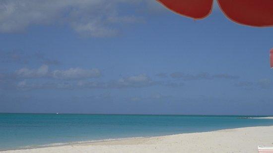 Ocean Club Resort:                   crowded beach...