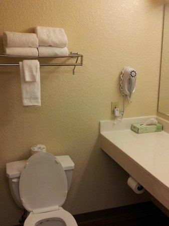 Extended Stay America - Minneapolis - Airport - Eagan - South:                                     Bathroom in room (minus shower)