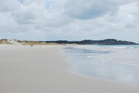 Coastal Chalet Suites: White sandy beaches Puheki Beach