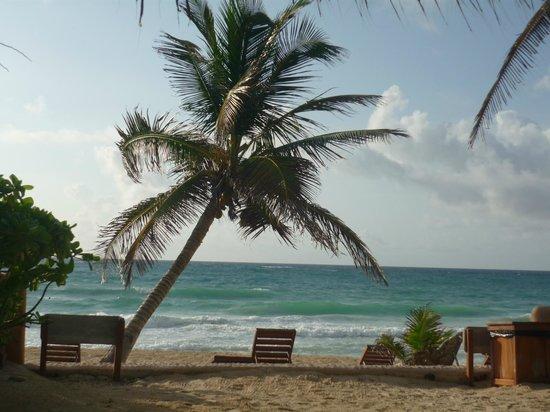 Hotel CalaLuna Tulum:                   :)