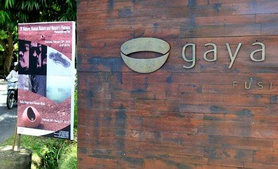 Gaya Gelato:                   gaya exhibition