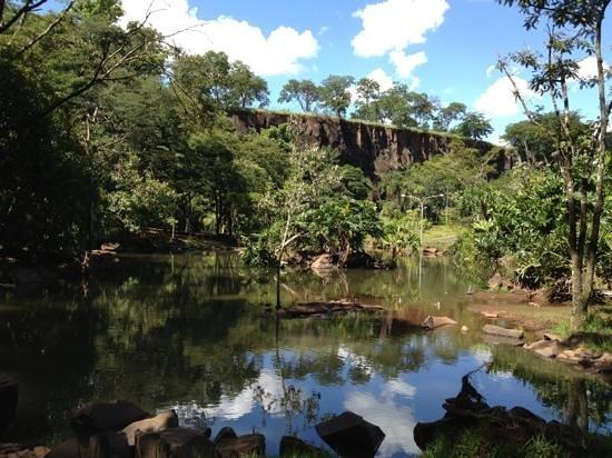 Ribeirao Preto, SP:                                     parque curupira