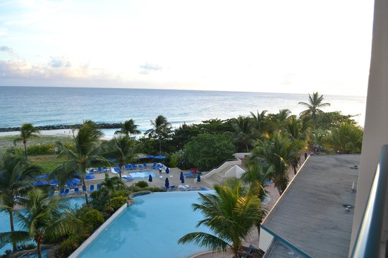 Hilton Barbados Resort:                   piscine