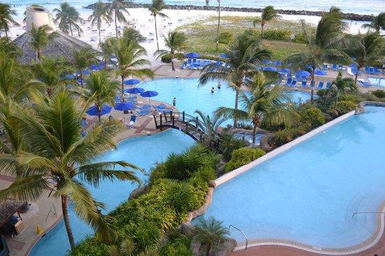 Hilton Barbados Resort:                   piscine vu de la chambre
