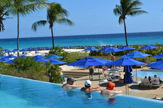 Hilton Barbados Resort:                   piscine vers la mer