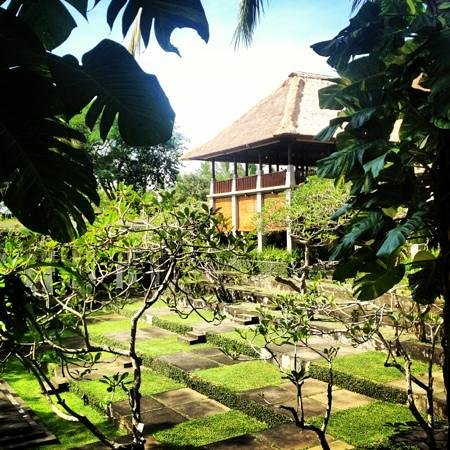 Maya Ubud Resort & Spa:                   一階の部屋からの眺め