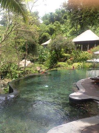 Maya Ubud Resort & Spa:                   プール