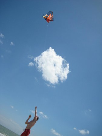 Palm Island Resort:                                     great place to fly kites