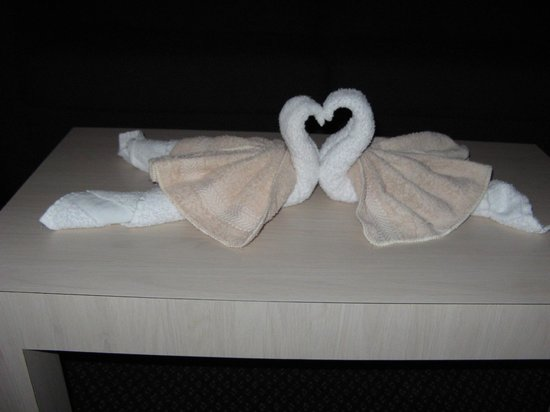 Apollo Inn Motel:                   Towels folded as swans