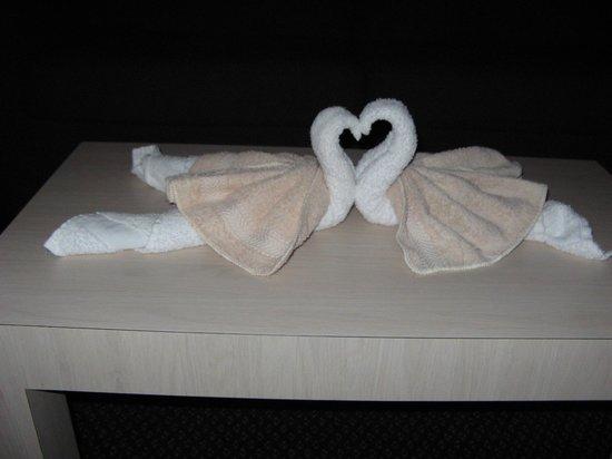 Apollo Inn Motel :                   Towels folded as swans