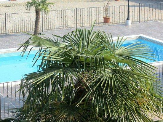 Agriturismo I Tre Camini : particolare piscina